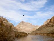 Helicóptero sobrevolando el Río Colorado
