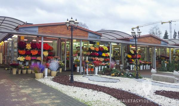 Mercado de flores en Vilnius