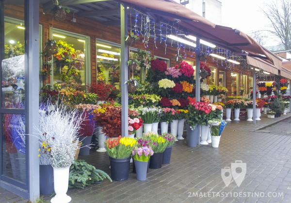 Tienda de flores en Vilnius