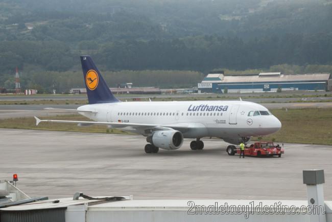 Airbus A319-114 (D-AILM) Lufthansa