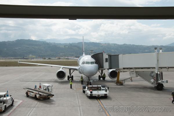 Airbus A319-114 (D-AILM) Lufthansa finger