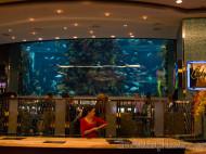 Acuario del restaurante Golden Nugget Hotel & Casino