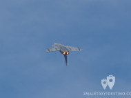 Eurofighter Typhoon looping