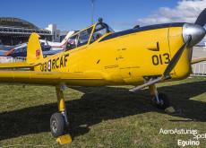de Havilland Canada DHC-1 Chipmunk detalle