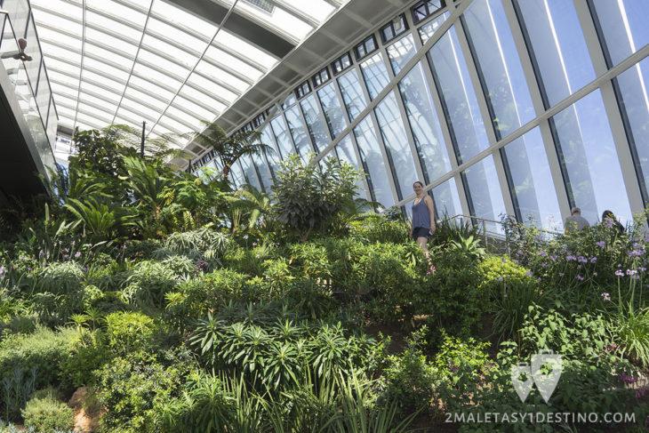 Jardín interior vertical - Sky Garden Londres