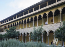 Monasterio de Pedralbes - Claustro y jardín