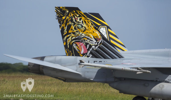 Cola del F/A-18 Hornet con librea del Tiger Meet 2017