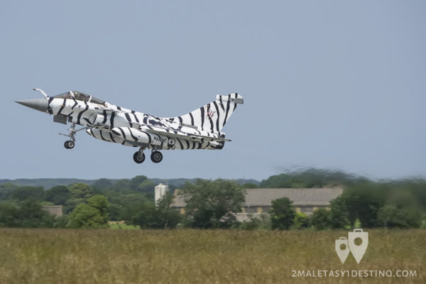 Rafale M librea tigre blanco en el Tiger Meet 2017