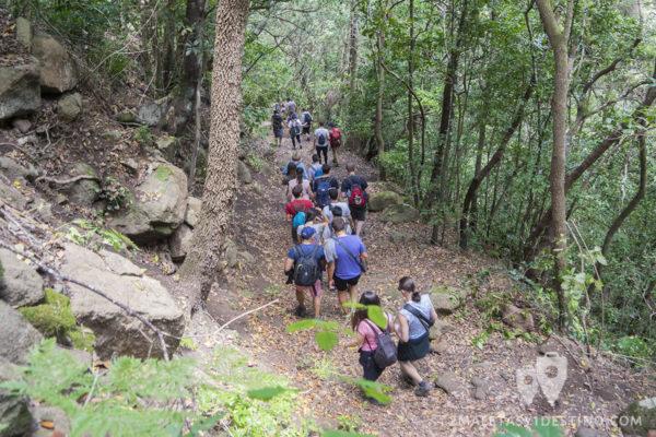 Trekking por el Parque Rural de Anaga