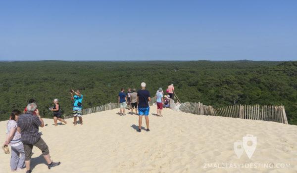 Vistas del bosque desde la Duna de Pilat en Francia