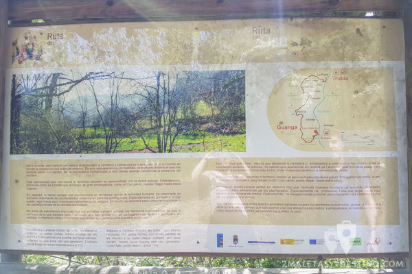 Cascadas de Guanga - Cartel Ruta del Oso